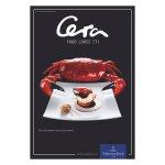 Tégla alakú Club tányér 42x22 cm, előétel, desszert, Cera, Villeroy & Boch